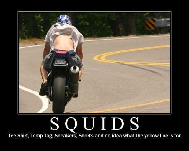Click image for larger version  Name:squid3.jpg Views:92 Size:23.9 KB ID:14095